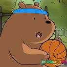 Chúng tôi đơn giản là gấu chơi bóng rổ