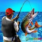 Câu cá 3D