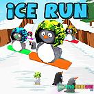 Cánh cụt đua ván trượt