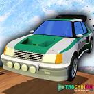 Đua xe Rally 3D