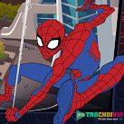 Spider man: Người nhện bảo vệ căn cứ